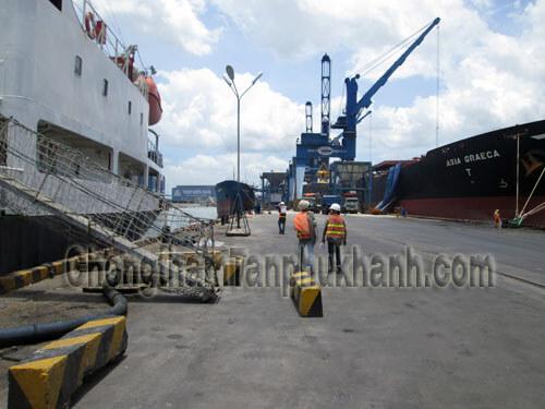 sửa chữa kết cấu bê tông cầu cảng